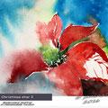 Christmas star I (O1) / Watercolour 12x17cm on Hahnemuehle Torchon  © janinaB. 2016
