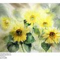 Sonnenblumen II / Aquarell 30x40cm auf Arches © janinaB.
