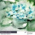 Flowers-III-2016 / Watercolour 22x15cm © janinaB. 2016