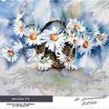 daisies IV / Watercolour 30x40cm on Arches CP © janinaB. 2016