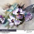 Pansy III / Watercolour 20x30cm  on Fabriano CP © janinaB. 2016