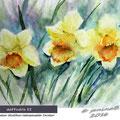 daffodils II / Watercolour 24x32cm Hahnemuehle Torchon © janinaB. 2016