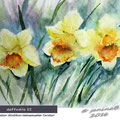 daffodils II (1) / Watercolour 24x32cm Hahnemuehle Torchon © janinaB. 2016
