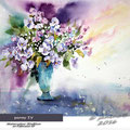 pansy IV / Watercolour 30x40cm  on Fabriano CP © janinaB. 2016