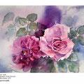 Rosen XX / Aquarell 23x31cm auf Arches GT  © janinaB. /  nicht verfügbar