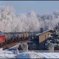 Frostige Nächte verwandelten die Landschaft in ein weisses Wintermärchen. Am 01.02.2011 konnte 241 449 beobachtet werden.