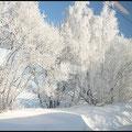 Der 29. Dezember war wieder einer der schönen Wintertage, an denen man unterwegs sein muss. Schon bei der  Fahrt mit der Bahn musste ich die Kamera auspacken, um einige Bilder durchs Zugfenster in die Landschaft zu schiessen.