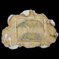 Die schweigenden Steine des ATHOS, Die Lebensspirale versehen mit einem OKLAD