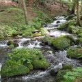 水源から流れ出て徐々に水量が増す