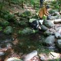 尚仁沢湧水の水源地