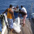 Blue Waves fand riesen Plastik im Meer und hat gestoppt um den raus zu ziehen. We care!!!