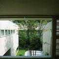 二階廊下より中庭の緑が見える