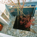 二階から見た親世帯の中庭植栽