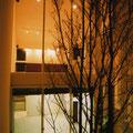 夜の中庭から見た外観