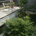 深い緑を感じられる傾斜庭の眺め
