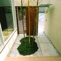 竹を植えこんだ玄関脇の中庭
