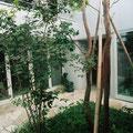 親世帯の中庭植栽