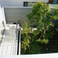 2階のリビングより1階への傾斜のついた庭を見下ろす