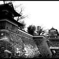 Suwa-Castle