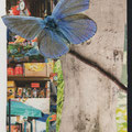 Collage Papier, blauer Schmetterling