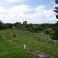 Der Friedhof ist wie ein Park
