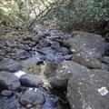 Deshaies River