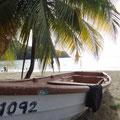 Fischerboot und Palme