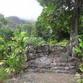 Auch die Ausgrabungen von Taaoa sind eindrucksvoll