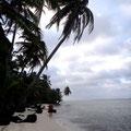 Und überall reichlich Kokospalmen