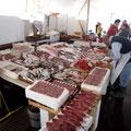 Und auch hier ein großer Fischmarkt