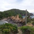 Tutukaka Bay