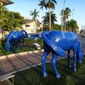 Die blauen Pferde, ein Wahrzeichen der Insel