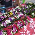 Blumenschmuck beim Markt
