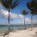 Die Inseln gesäumt von Palmenstränden