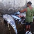 Fischmarkt in Tarrafal