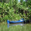 Mit den Kanus fahren die Gunas zu ihren Feldern und Wasser aus dem Fluss holen