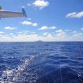 Maupiti verschwindet im Kielwasser