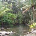 Einer der schönen Flüsse