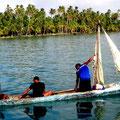 Traditionell werden die Kanus gepaddelt