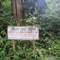 Mitten im Wald dann die Verbotsschilder