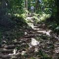 Die steilen Passagen haben sie mit Holzstufen gesichert