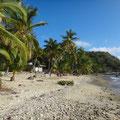 Außer Sand gibt es hier auch Muscheln und Korallenreste