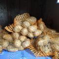 Kartoffeln zur Zeit Ausverkauft