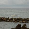 朝、1人乗りの漁船が出ています。何がとれるのでしょう?