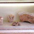 Martine Haas : sculptures en terre cuite  - plissements, brise dans les feuilles, vent arrière, manuscrit