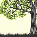 tree/「船を見る」より d