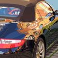 Porsche 1 -  2011   Acrylfarbe auf LW  -   1,8m x 1,8m
