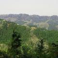 草戸山から見た高尾山_2008年4月