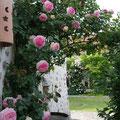 Gîte Senlis Chantilly Parc Astérix crepy en valois pierrefonds ermenonville oise - chambre d'hotes senlis