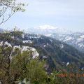 登山中の尾根から見た白山。